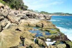 Kedung Tumpang Beach