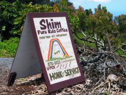 Shim's Coffee Farm