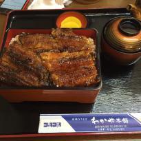 Sumiyakiunagi Wakaya