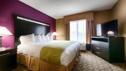 Best Western Mcdonough Inn & Suites