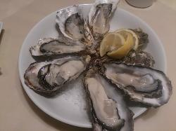 The Oyster Room Nagoya Lachic