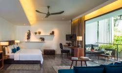Suite Room (168007386)
