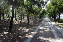 Kaohsiung Botanical Garden