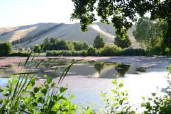 Taylor Dam