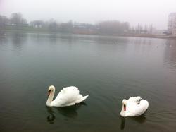 Strkovecke Lake