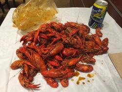 la Crawfish 290