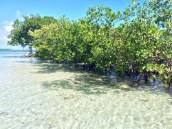 Reserva Natural Medio Mundo y Daguao