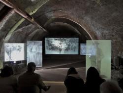 Museo interattivo di Pellizza da Volpedo