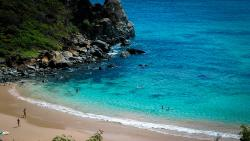 Praia do Meio (168614527)