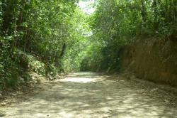 Parque municipal de Maceio