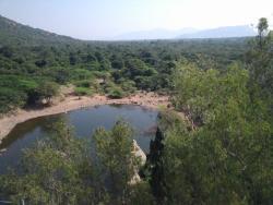 Kalyani Dam