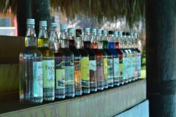 Punta Cana Princess Pool Bar