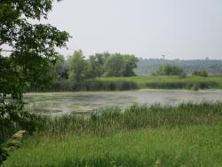 Lake Elmo Park Reserve
