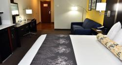 "King Executive room- This is a spacious room & comes with sofa bed, 42"" Flat screen TV, large wo"