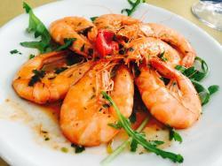 Fishfood
