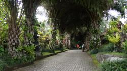 Amazing resort ! A must in your trip to Bali