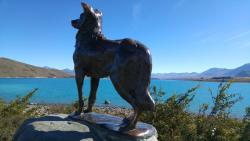 Mackenzie Sheep Dog Statue