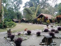 Cozy, beautiful, relaxing eco camp