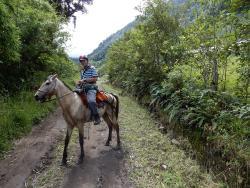 Isla de Banos Horse Riding