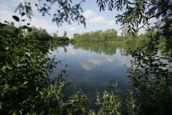 Parc d'Isle Jacques Braconnier