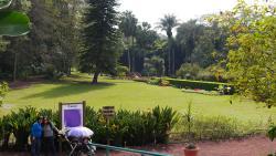 Jardin Botanico Francisco Javier Clavijero