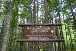 Orto Botanico Forestale