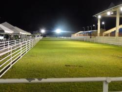 Goat Race Stadium