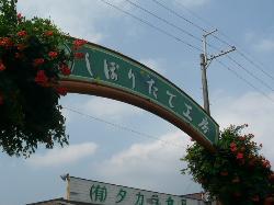 Takara Farm Shiboritate Kobo