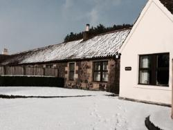 Maple cottage in the snow 2016