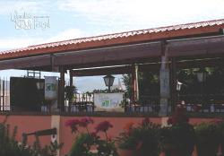 Cilantro & Perejil