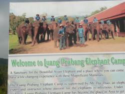 Luangprabang Elephant Camp