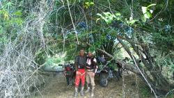 Angkor Enduro Dirt Bike Tours - Day Tours