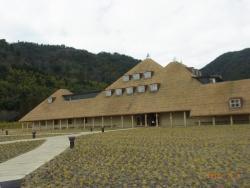 芝屋根のユニークな建物
