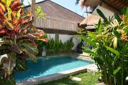 piscine, jardin