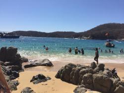 Playa Organo
