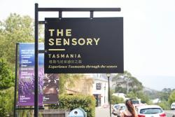 The Sensory Tasmania