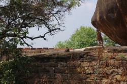 Thirumayam Fort