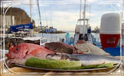 Grill Costa Mar