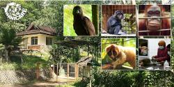 Cikananga Wildlife Center