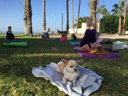 Yoga & Pilates Costa Adeje