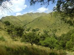 Reserva Natural Provincial Mogote Bayo