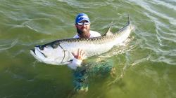 Giant Tarpon Inside Tampa Bay!!