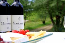 Marionette Winery