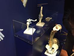 Museo di Storia Naturale e Archeologia