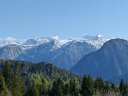 Alpengasthof Halleralm