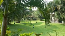Amazingly lush green place... for nature lovers!!!