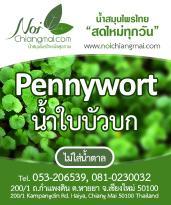 """Noi's """"Fresh Daily"""" Thai Herbal Juices"""