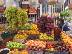 Bogota Foodie Food Safari Tours