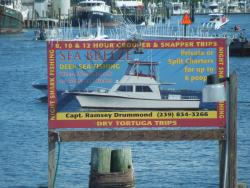 Variety of Ocean Trips available at the Dock