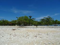 Manadi Island